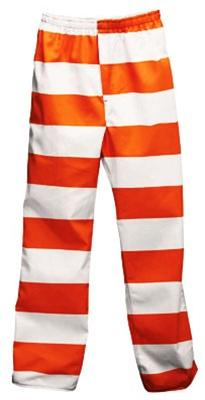 Inmate Striped Pants